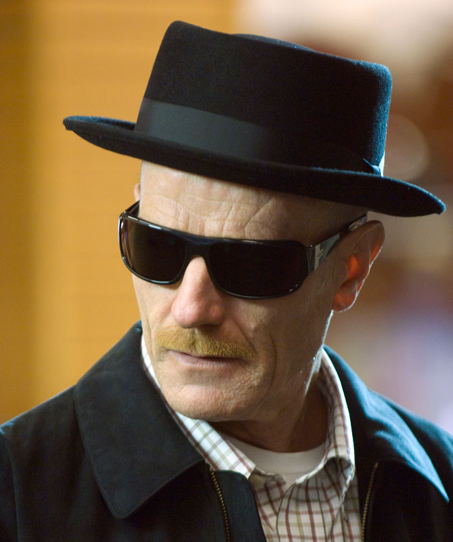 heisenberg hat and sunglasses - Halloween Costume Breaking Bad