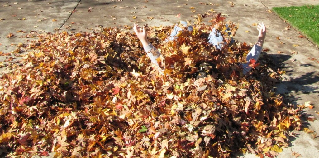 A Pile of Leaves to Hide In for your Halloween Gag